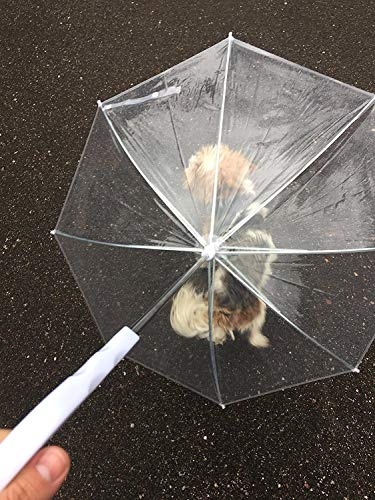 Midlee Clear Dog Rain Umbrella with Leash