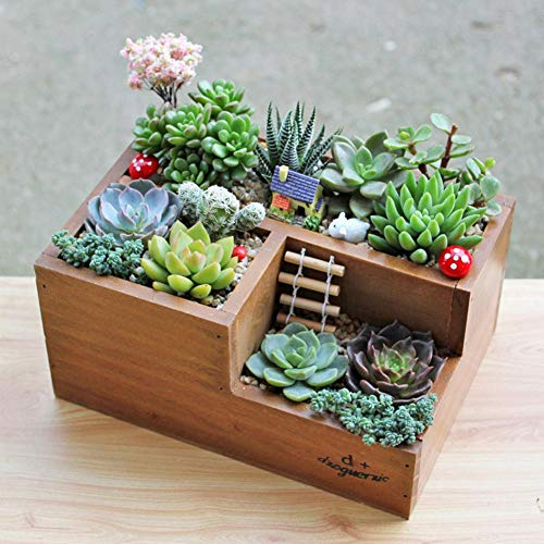 Ritapreaty DIY Wooden Planter Box, Pattern Succulent Planter Plant Container Scatola in Stile Rustico Scatola per Desktop Remote Controller