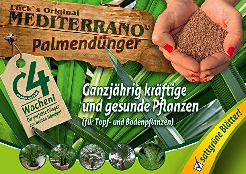 Freilandpalmendünger, Palmendünger, Hanfpalmendünger 1,5 Kg Original Mediterrano