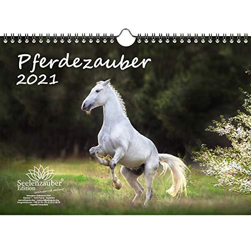 Pferdezauber DIN A4 Kalender für 2021 Pferde und Fohlen - Geschenkset Inhalt: 1x Kalender, 1x Weihnachtskarte (insgesamt 2 Teile)