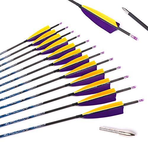 ACCMOS 12 Piezas 28 Pulgadas Caza Flecha de Carbono ID 4,2 mm Spine 700 con Pluma de Pavo de 4' para Tiro al Arco Disparo Accesorios de Arco (Spine 700, 28 Inch)