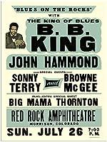 B.B KING JOHN HAMMOND BLUES ON THE ROCKS 金属板ブリキ看板警告サイン注意サイン表示パネル情報サイン金属安全サイン
