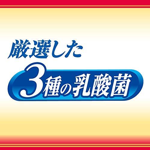 ぐんぐんグルト3種の乳酸菌500ml×24本