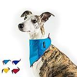 Dognsug perro bandana enfriamiento mascota bufanda pañuelo babero cuello reversible Reino Unido hecho - pequeño cielo azul y quemado naranja