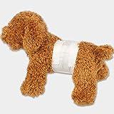WYXHCJZ Pañales del Animal doméstico, pañales Masculinos del Perro, Circunferencia Masculina del Perro, incontinencia urinaria de la Tela Impermeable,L