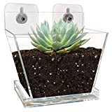 NIUXX Window Boxes with Drainage Tray, Succulents Cactus Plant Flower Pot with Mounting