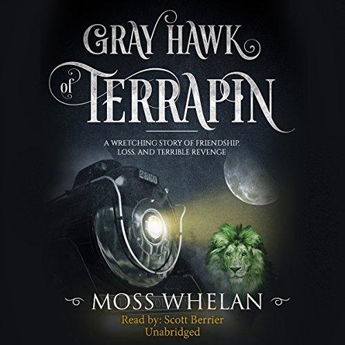 Gray Hawk of Terrapin audiobook cover art