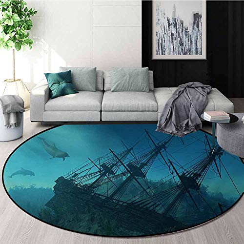 Why Should You Buy Nautical Warm Soft Cotton Luxury Plush Baby Rugs,Dolphins Ruined Wreckage Underwa...