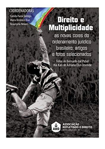 Direito e Multiplicidade: As novas cores do ordenamento jurídico brasileiro