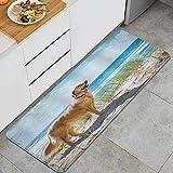 XINGAKA Alfombra de Cocina,Perro Golden Retriever en una Duna de Arena con Vistas a la Playa Tropical Ocean Sky,Alfombrilla de Cocina Antideslizante Gruesa(45*120cm