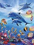 Dribotway Cuadro de diamantes 5D con delfín para hacer tú mismo, tamaño completo, 30 x 40 cm, cuadro de punto de cruz, decoración de pared