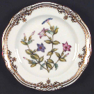 Spode Bread & Butter Plate Stafford Flowers