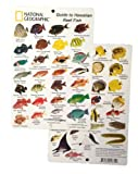 National Geographic - Guide to Hawaiian Reef fish - Fish ID Card (6 in by 9 in)