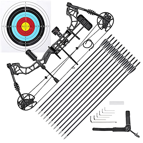AW 70 Lbs Pro Compound Bow Kit Right Hand Target Practice Hunting Arrow Archery Man