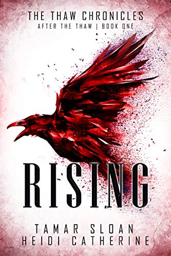 Book Cover for Rising
