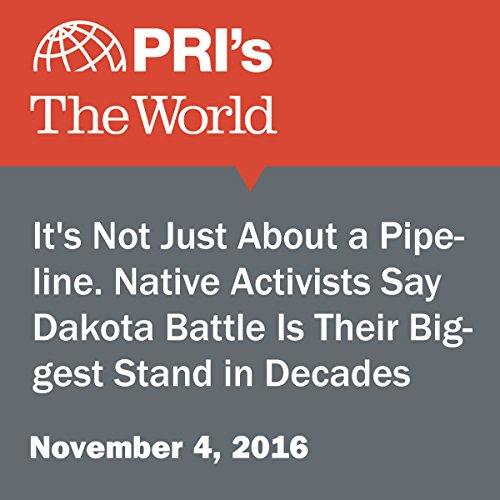 It's Not Just About a Pipeline. Native Activists Say Dakota Battle Is Their Biggest Stand in Decades audiobook cover art