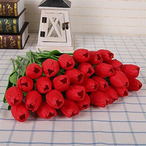 KAYI Colorful Tulip Flower Graines Accueil Intérieur Chambre Bonsaï Plante En Pot Facile à Cultiver