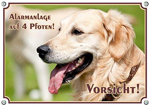 Hundeschild - Golden Retriever - haltbares Metallschild bis DIN A3 bestellbar, DIN A5