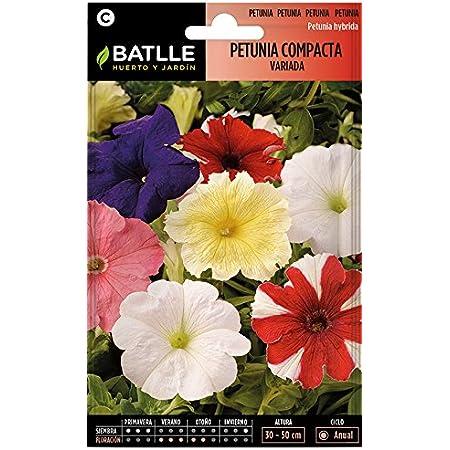 Semillas de Flores - Petunia Compacta variada - Batlle