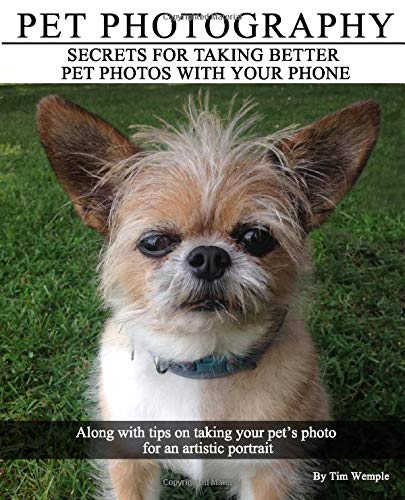 Pet Photography - Secrets for taking better pet photos with your phone:...