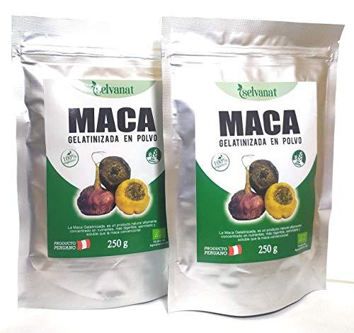 Maca Gelatinizada en polvo 500 g (Pack 2 unidades de 250 g). Sin gluten No-OMG Orgánica y Vegana. Energía, Fertilidad, Equilibrio Hormonal y Salud Sexual para mujeres y hombres