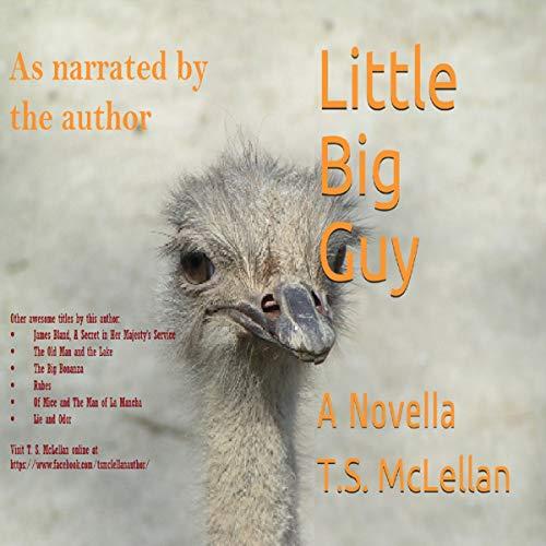 Little Big Guy audiobook cover art