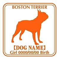 ワラ犬 ボストンテリア 横向き ステッカー Eパターン ボーイ フルーティオレンジ