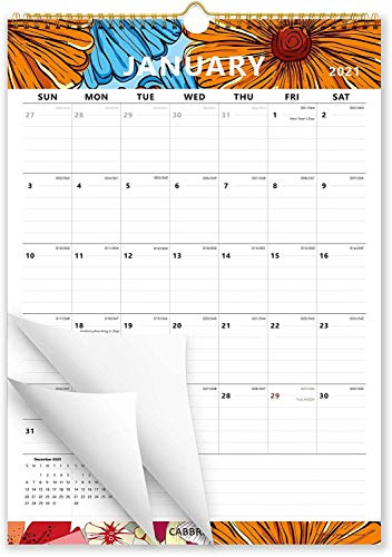 Cabbrix 2020-2021 Year Monthly Wall Calendar, Perfect for Home Schooling Plan, 17 x 12 Inches, Ruled Blocks, Schedule for Home or Office