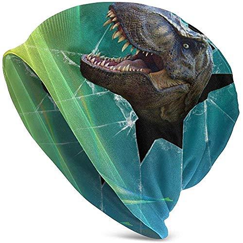 Beanie Caps dinosaurus scherm Gebroken grappige 3D Volwassenen Slouchy Collection gebreide mutsen Skull Cap Winter zomer Ski Baggy Hat Black