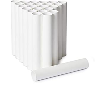 Craft Rolls, 24-Pack Paper Cardboard Tubes for DIY Crafts, 9.8 Inches, White