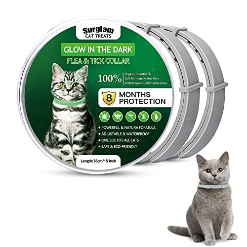 Collare Antiparassitario per Gatti, Collare Antipulci per Gatti Impermeabile Regolabile Naturale con Protezione di 8 Mesi, Si Illumina al Buio, Soluzione Sicuro Contro i Parassiti per Gatto