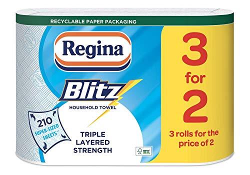 Regina Blitz 12 Rolls Original Kitchen Rolls in Recycled ECO Paper Bag