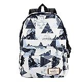 Van Caro Unisex Waterproof Large Travel Laptop Backpack with Luggage Sleeve Heavy Duty