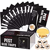 Mouse Glue Traps Large Size, 12 Pieces Peanut Butter Mouse Traps Glue Pads Super Sticky Boards for Indoor and Outdoor Mice, Rats, Rodents, Pests, Insects, Ants, Cockroach, Spiders.