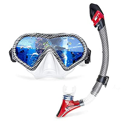 Carbon Fiber Coated Diving Mask Dry Snorkeling Combo Adjustable Head Strap Dive Glasses+Breath Tube Underwater Sea Scuba Diving Gear for Adult Training (Carbon Fiber)