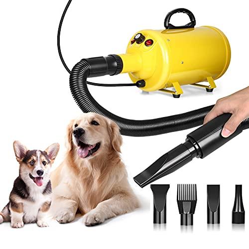 Asciugacapelli per Cani, Soffiatore per Cani da 2800W, Velocità e Calore del Vento Regolabile, Toelettatura Professionale per Animali Domestici, Rumore Basso, 4 Ugelli Intercambiabili Inclusi, Giallo