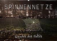 Spinnennetze - Wunder der Natur (Wandkalender 2022 DIN A2 quer): Technische Meisterleistungen der Spinnen in ausdruckstarken Bildern. (Monatskalender, 14 Seiten )