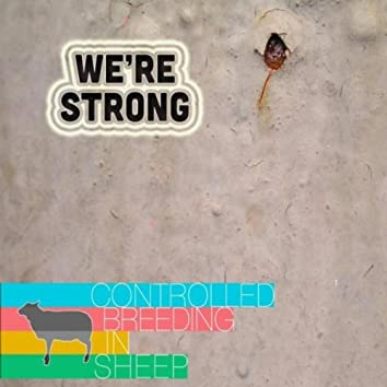 We're Strong