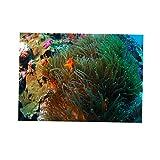 Fondo de Acuario Coral 3D Pegatina Fish Tank Decoración Pared Pintura Cómodo - XXL