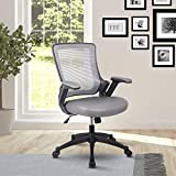 Height Adjustable Arms Mid-Back Mesh Task Office Chair, 25' W x 25' D x 34' H, Gray