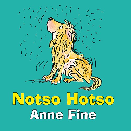 Notso Hotso audiobook cover art