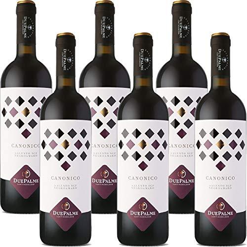 Canonico Negramaro Salento IGP   Cantina Due Palme   Confezione da 6 Bottiglie da 75 Cl   Vino Rosso del Salento   Idea Regalo
