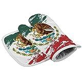 耐熱ミトン キッチン手袋 メキシコの旗 オーブン 鍋敷き ミット 2点セット 鍋つかみ バーベキュー BBQ 耐熱グローブ やけど防止 滑り止め クッキング用 フリーサイズ おしゃれ 厚手 左右兼用 耐熱皿マット
