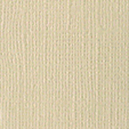 Bazzill T9-942 - Cartulina texturizada monocromática (30,5 x 30,5 cm), diseño de ramitas