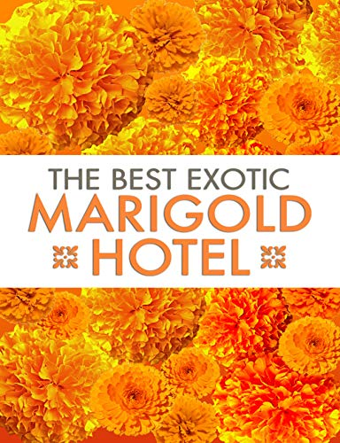 The Best Exotic Marigold Hotel: Screenplay