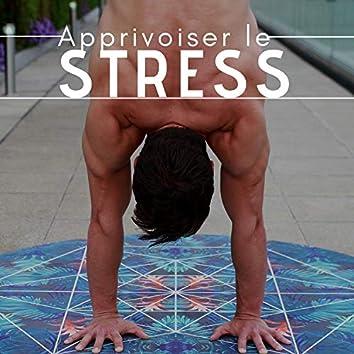 Apprivoiser le Stress: Pleine Conscience, Meditation Mindfulness, Yoga