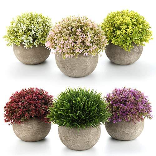 T4U Piante Artificiali di Plastica Piante in Vaso Fiore Colorito Decorativo di Casa e Ufficio Confezione da 6