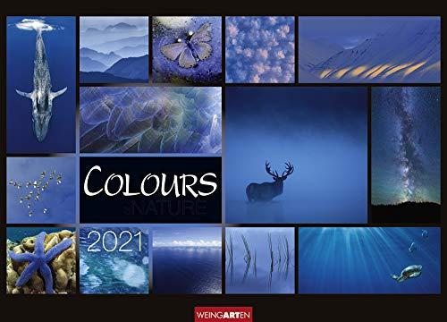 Colours of Nature - Kalender 2021- Weingarten-Verlag - Wandkalender mit farbharmonischen Collagen - 67,8 cm x 48,8 cm