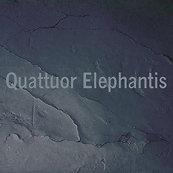 Quattuor Elephantis