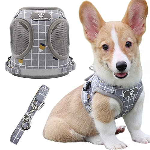 Dog Harness for Large Dogs, No Pull Pet Harness with 1 Dog Leash, All Weather Mesh Vest Harness, Adjustable Soft Padded Dog Vest, Reflective No Choke Pet Vest for Dogs and Cats Walking (Gray, XL)